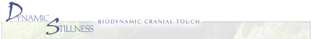 Craniosacral Seminars, Craniosacral Classes, Therapy, ADD, ADHD, Difficult Births, Milne Institute.